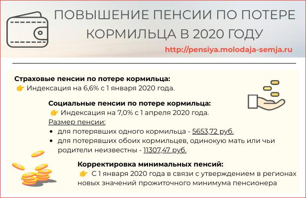 Пенсия по потере кормильца в 2020 году сумма
