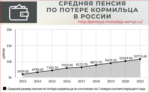 Средняя пенсия по потере кормильца в России статистика